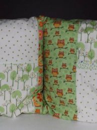 Twit Twoo Cushion Set